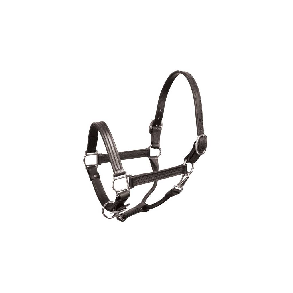 Perris 1in Leather Shw Halter