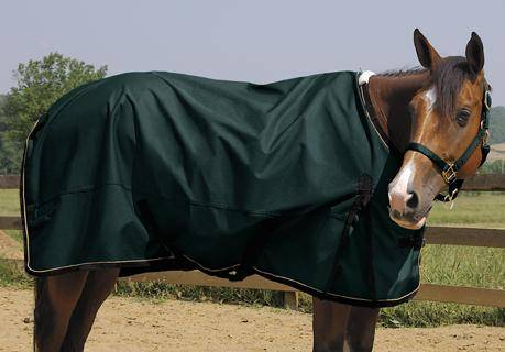 Weaver Lightweight Horse Turnout Rainsheet