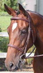 Nunn Finer Ravenna Hunter Bridle