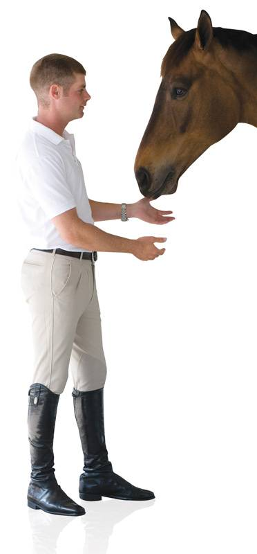 Ovation Ultra DX Mens Knee Patch Breeches