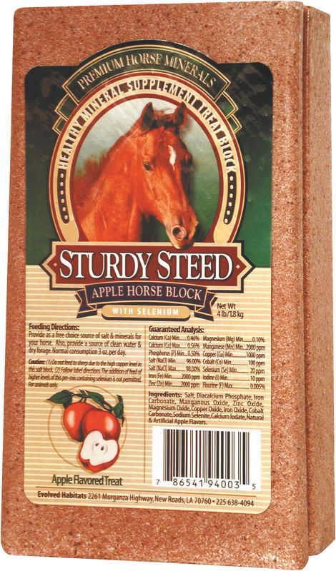 Sturdy Steed-Horse Block