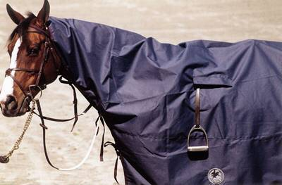 Equestrian Tack And Supplies