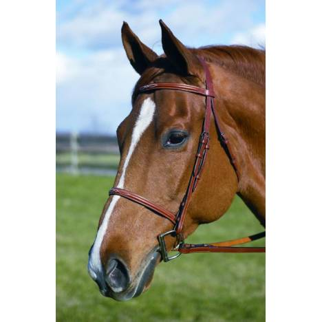 Henri de Rivel Fancy Raised Bridle with Laced Reins