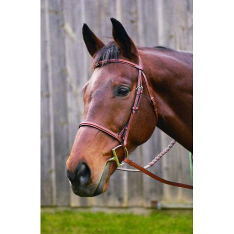 Henri de Rivel Plain Raised Snaffle Bridle