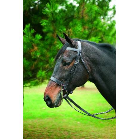 Henri de Rivel Collection Hunt Bridle