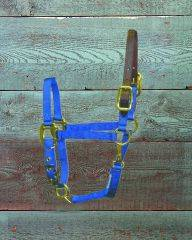 Hamilton Pony Halter with Leather Crown