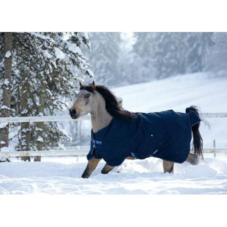Amigo Bravo-12 By Horseware Pony Heavy Weight Turnout Blanket