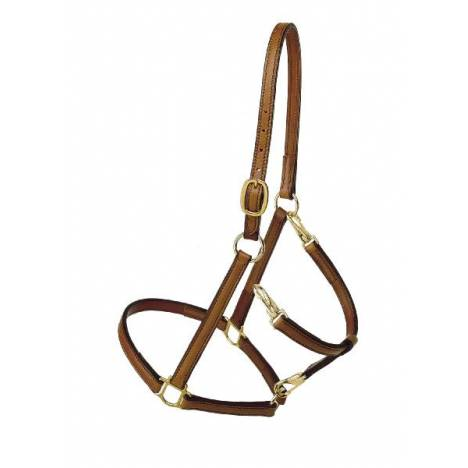 TORY LEATHER Track/Grooming Conversion Halter with Brass Hardware