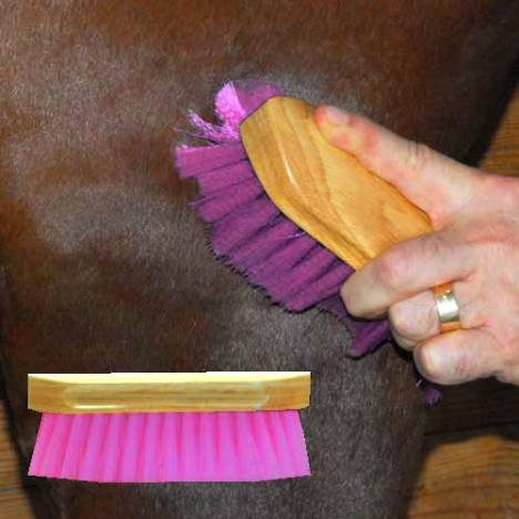 Pony Brush