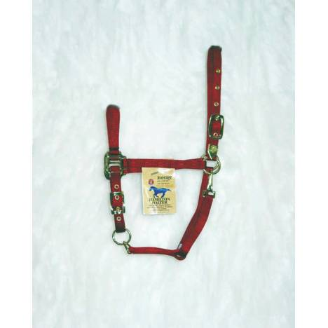 Hamilton Arab Halter with Adjustable Chin and Snap