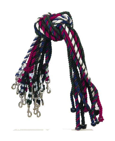 Perris Leather Multi Colored Cotton Lead
