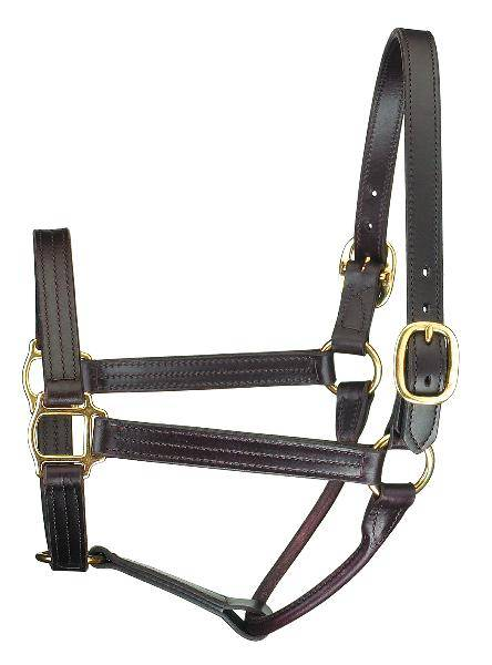 Perris Leather Collection Premium Track Style Leather Show Halter