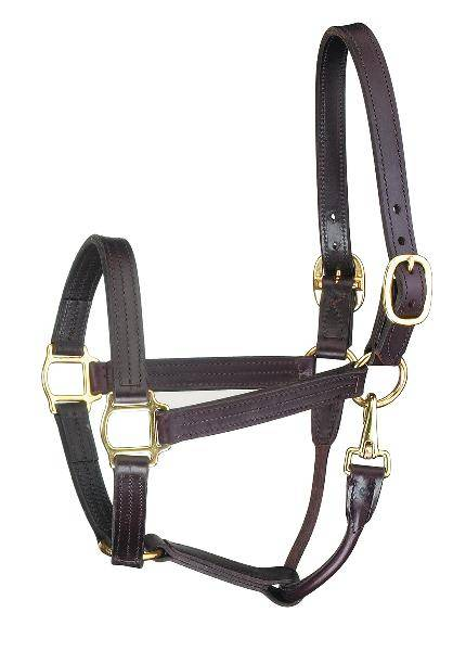 Perris Leather Collection Premium Track Style with Snap Leather Show Halter