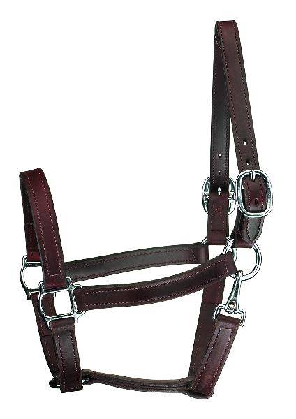 "Perris Leather 1"" Track w/Snap Chrome Hardware"