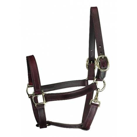 Perris Leather Collection Track Style Leather Turnout Halter with Snap at Throat