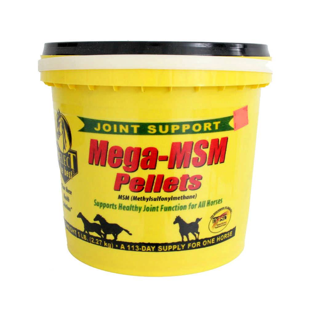 Select Mega MSM Supplement