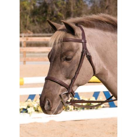 Henri De Rivel Club Plain Raised Snaffle Bridle