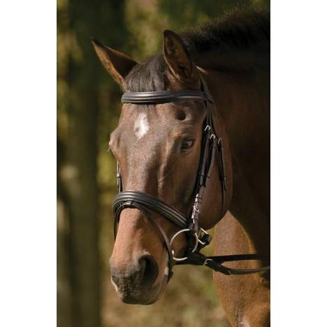 Henri De Rivel Dressage Bridle with Crank and Flash