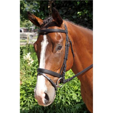 Nunn Finer Gifted Bridle