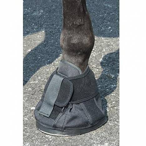 Natural Hoof Shoe Size