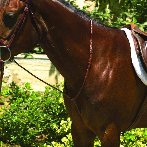 Perris Professional Raised Standing Martingale