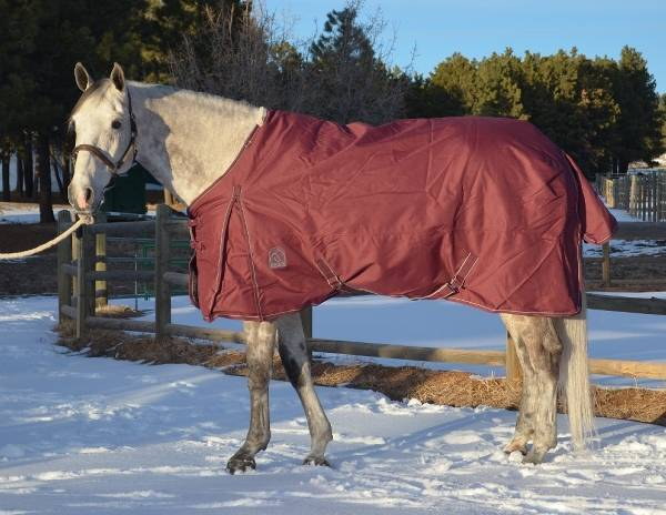 EOUS Heavy Weight 1800D Turnout Horse Blanket