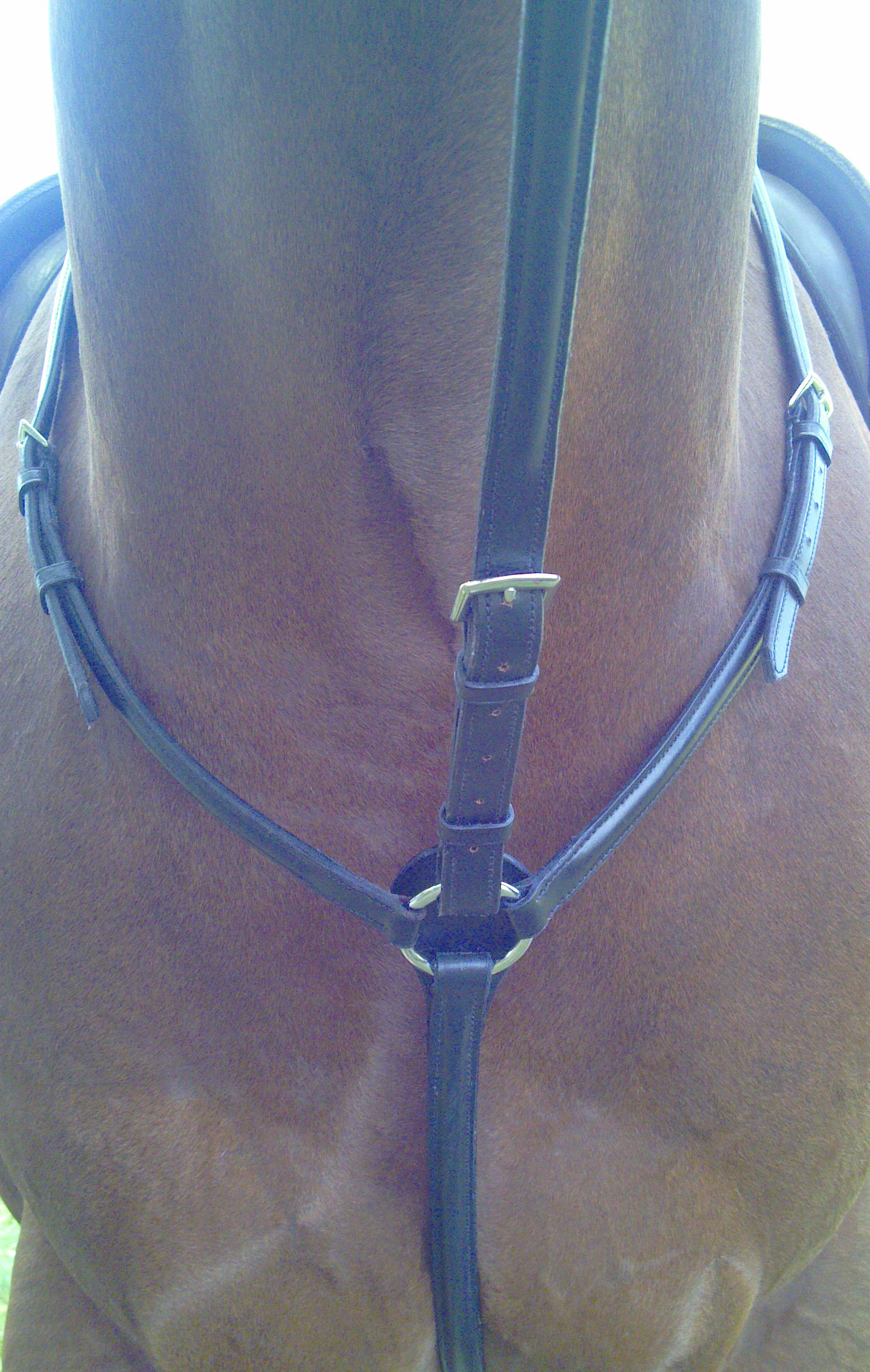 Shannon Raised Breastplate