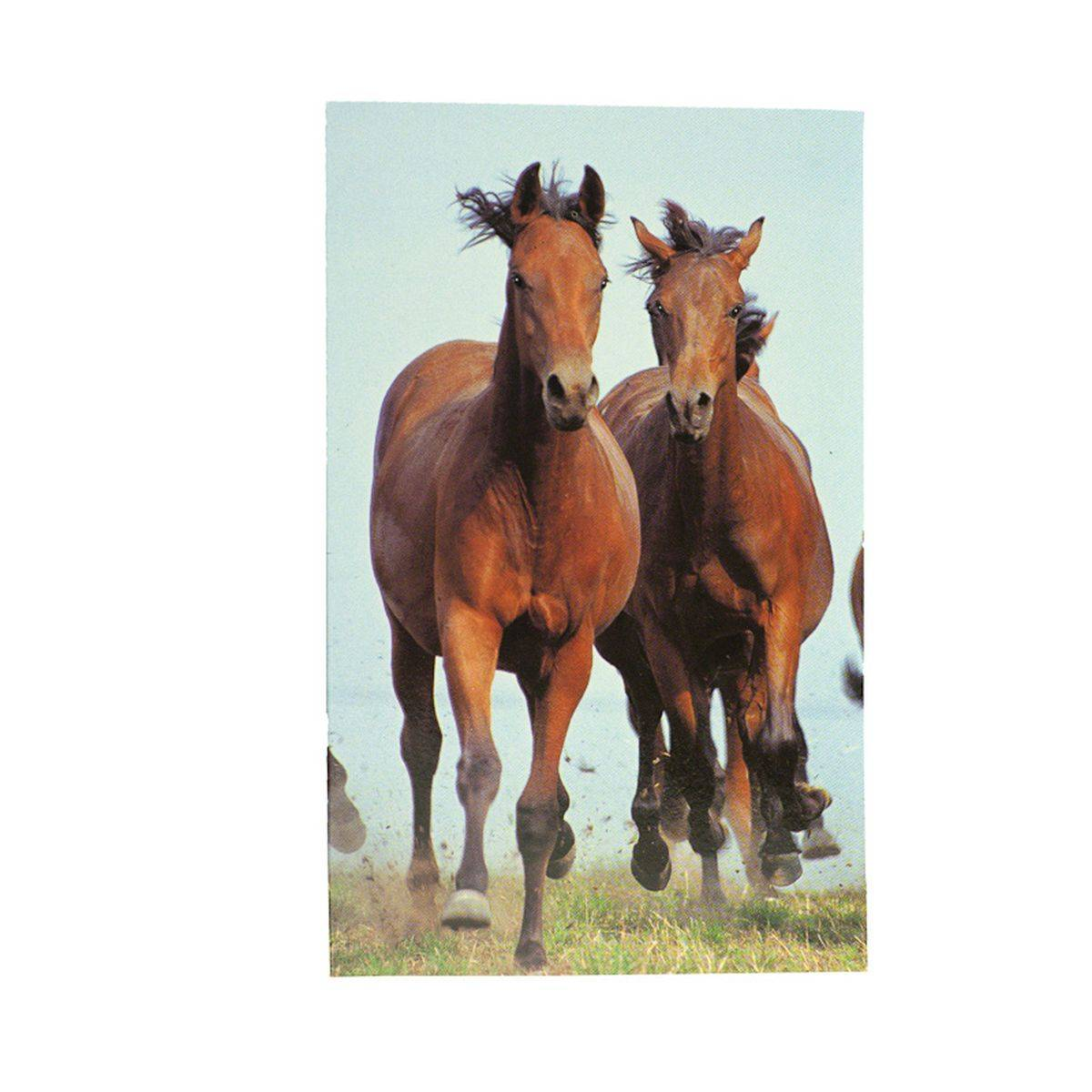 Horze Brown Horse Notebook