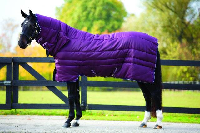 Amigo 1-Piece Medium Weight Insulator Stable Blanket