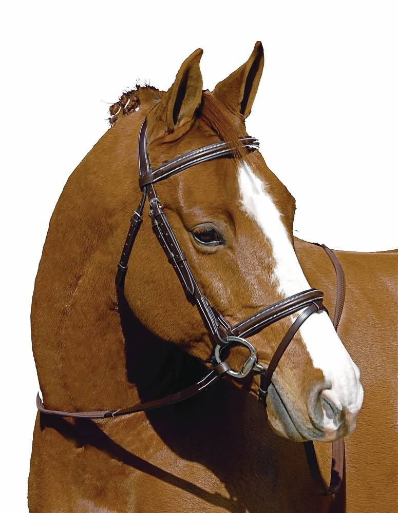 Henri De Rivel Mono Crown Event Bridle