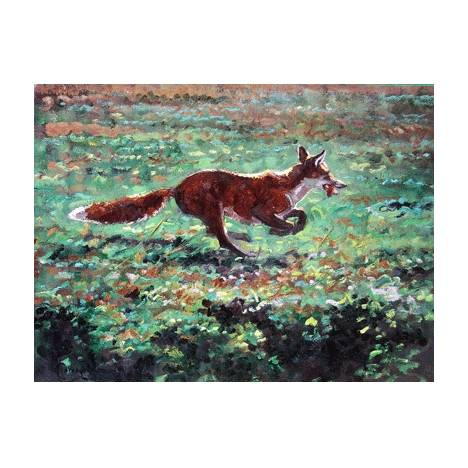 Can't Catch Me (Fox) Blank Greeting Cards - 6 Pack