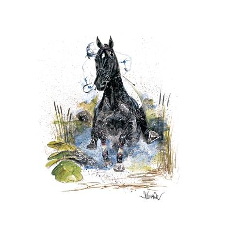 Joker, Eventing Horse Art Print by Jan Kunster