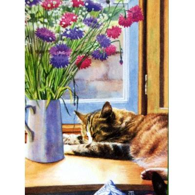 Table Manners Blank Greeting Cards - 6 Pack