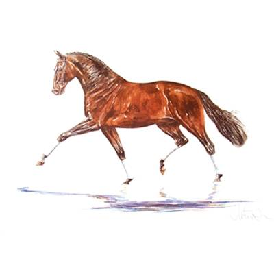Hengst, Dressage Art Print by Jan Kunster