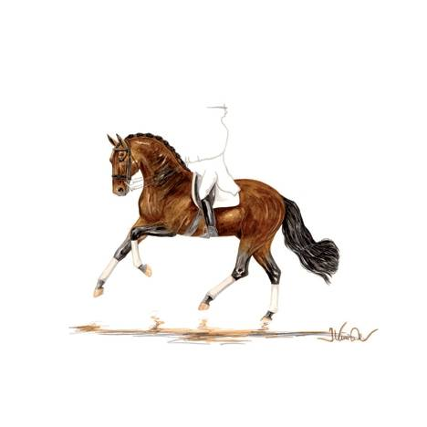 Prima Donna (Dressage) By: Jan Kunster