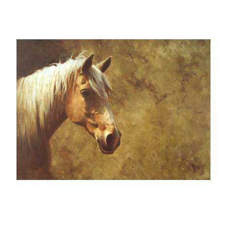 Palomino Blank Greeting Cards - 6 Pack