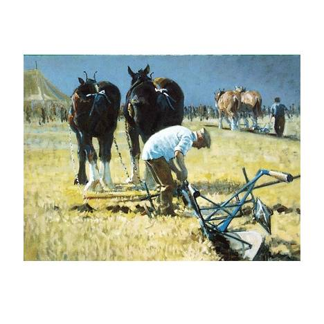 Fine Tuning (Draft Horse) Blank Greeting Cards - 6 Pack
