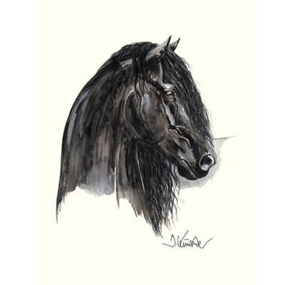 Johnny C, Friesian Art Print by Jan Kunster