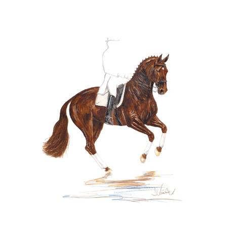 Scotch, Dressage Art Print by Jan Kunster