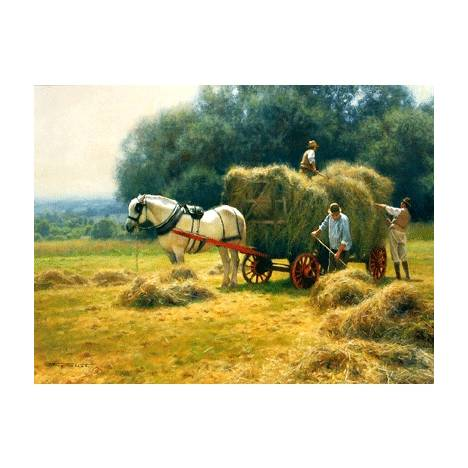 Hay Making Blank Greeting Cards - 6 Pack