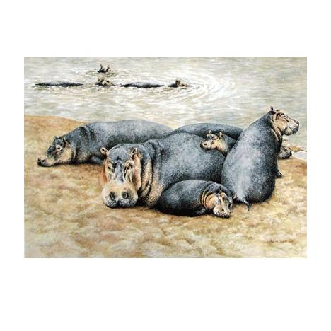 Happy Hippos Blank Greeting Cards - 6 Pack