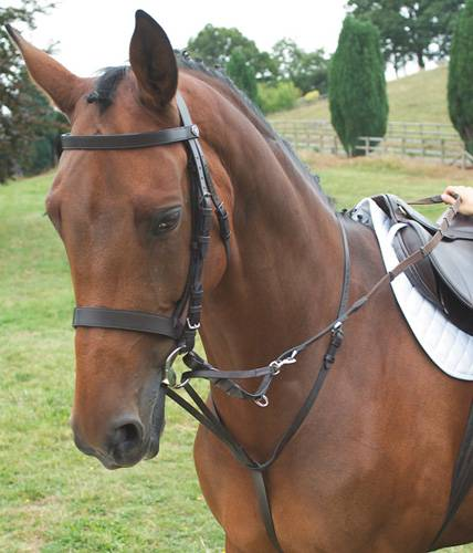 SE German Martingale