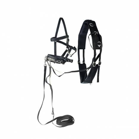 Horze Lunging Set