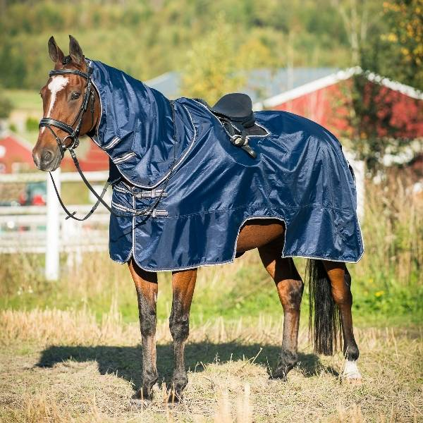 Horze Caffrey Riding Rug