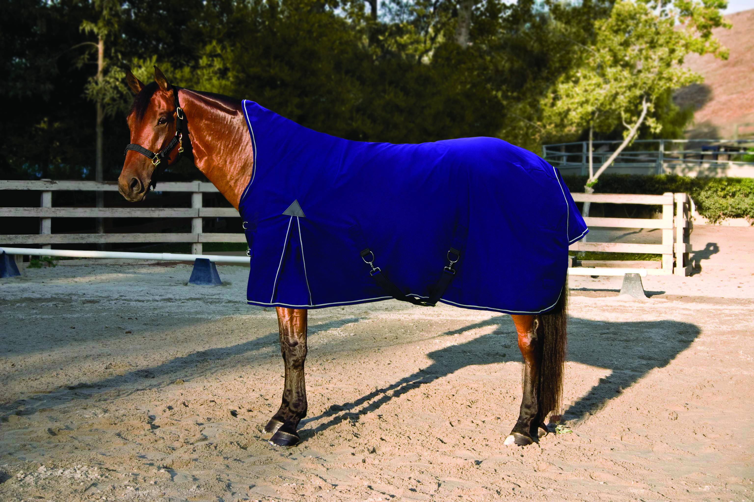 Outlet - Kensington Platinum Mid Neck Turnout Sheet - Lightweight (no fill), 69, Blue Violet/Blue Violet/Silver