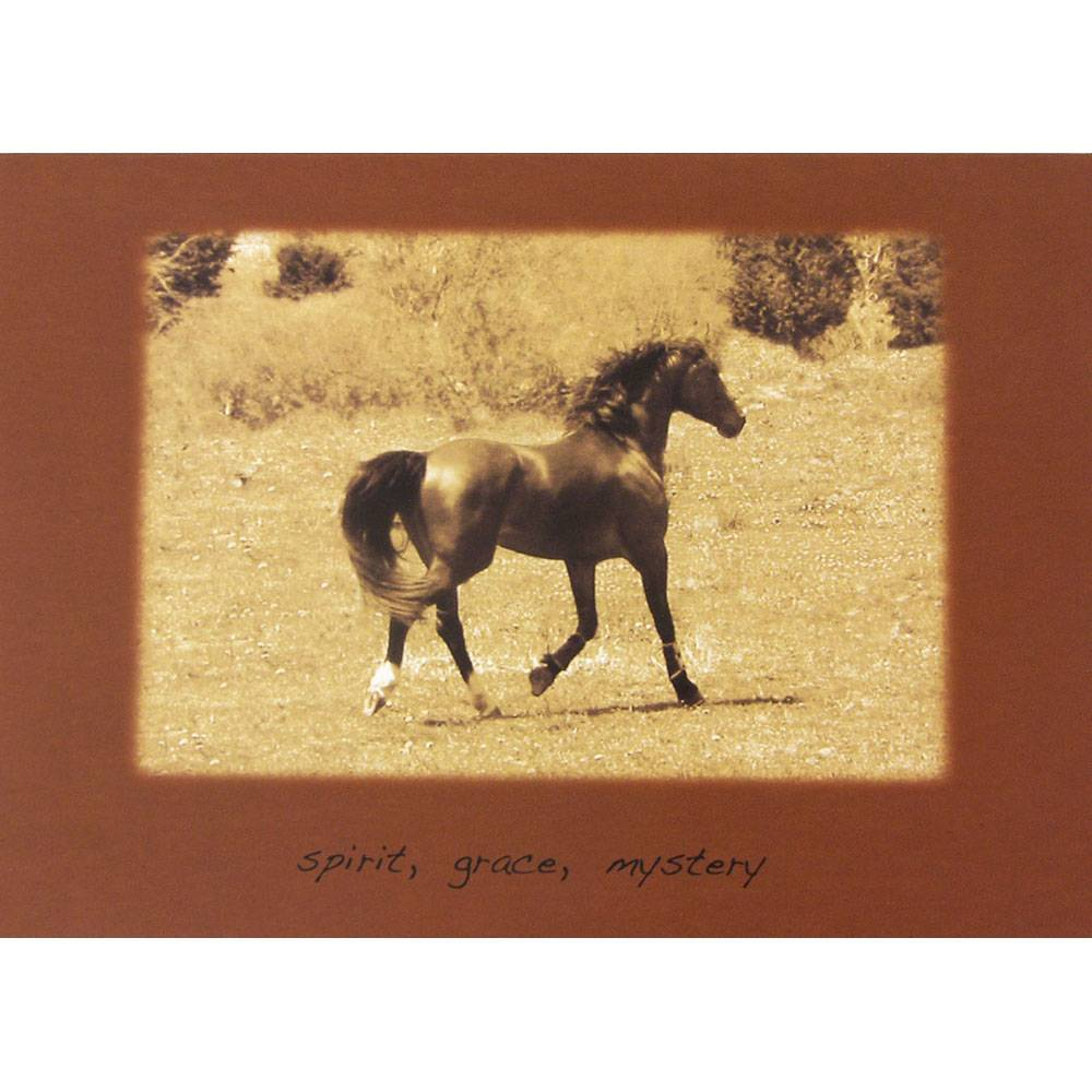Sympathy (Horse) Spirit, Grace, Mystery Blank Greeting Cards - 6 Pack
