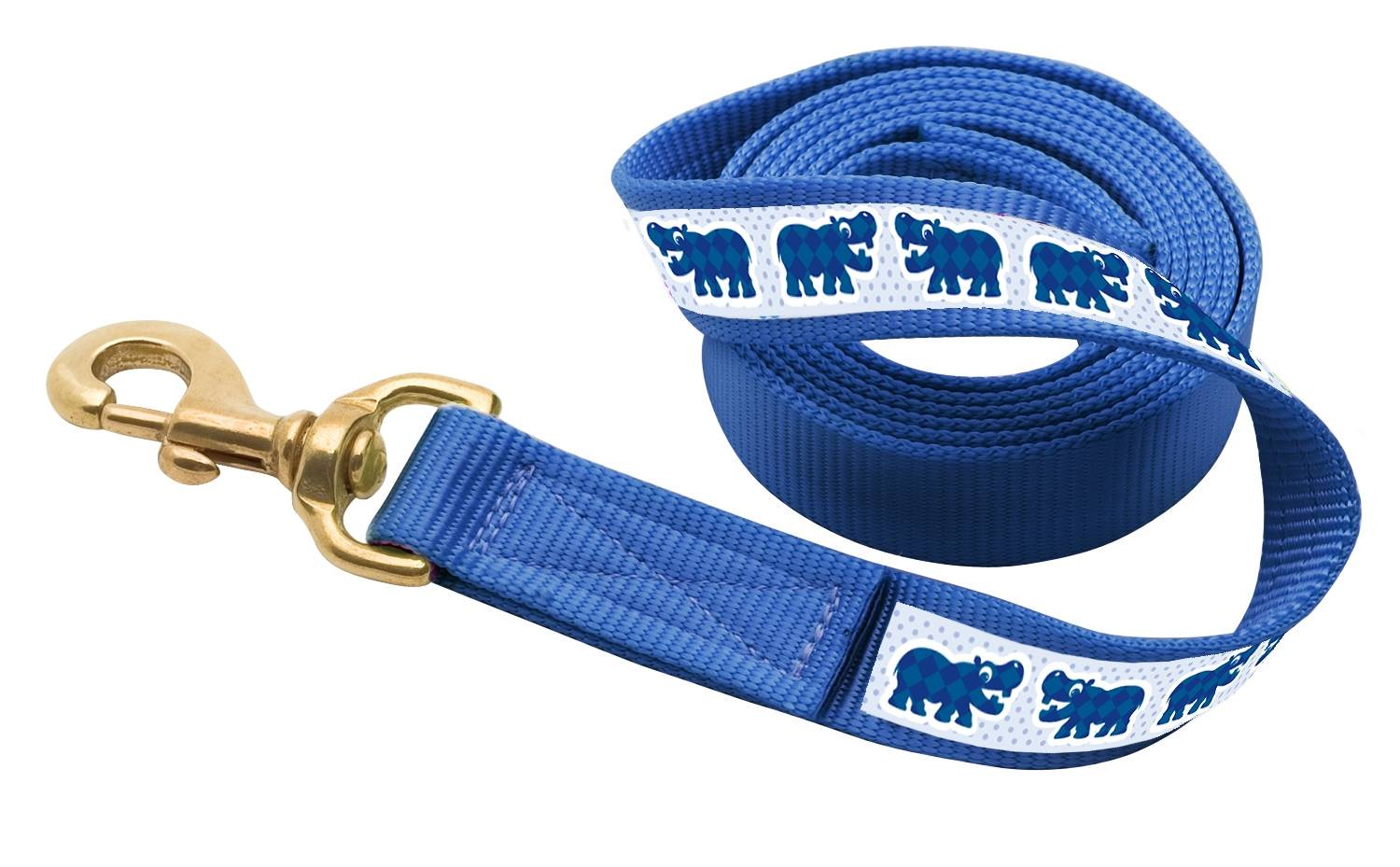 PE Nylon Ribbon Lead