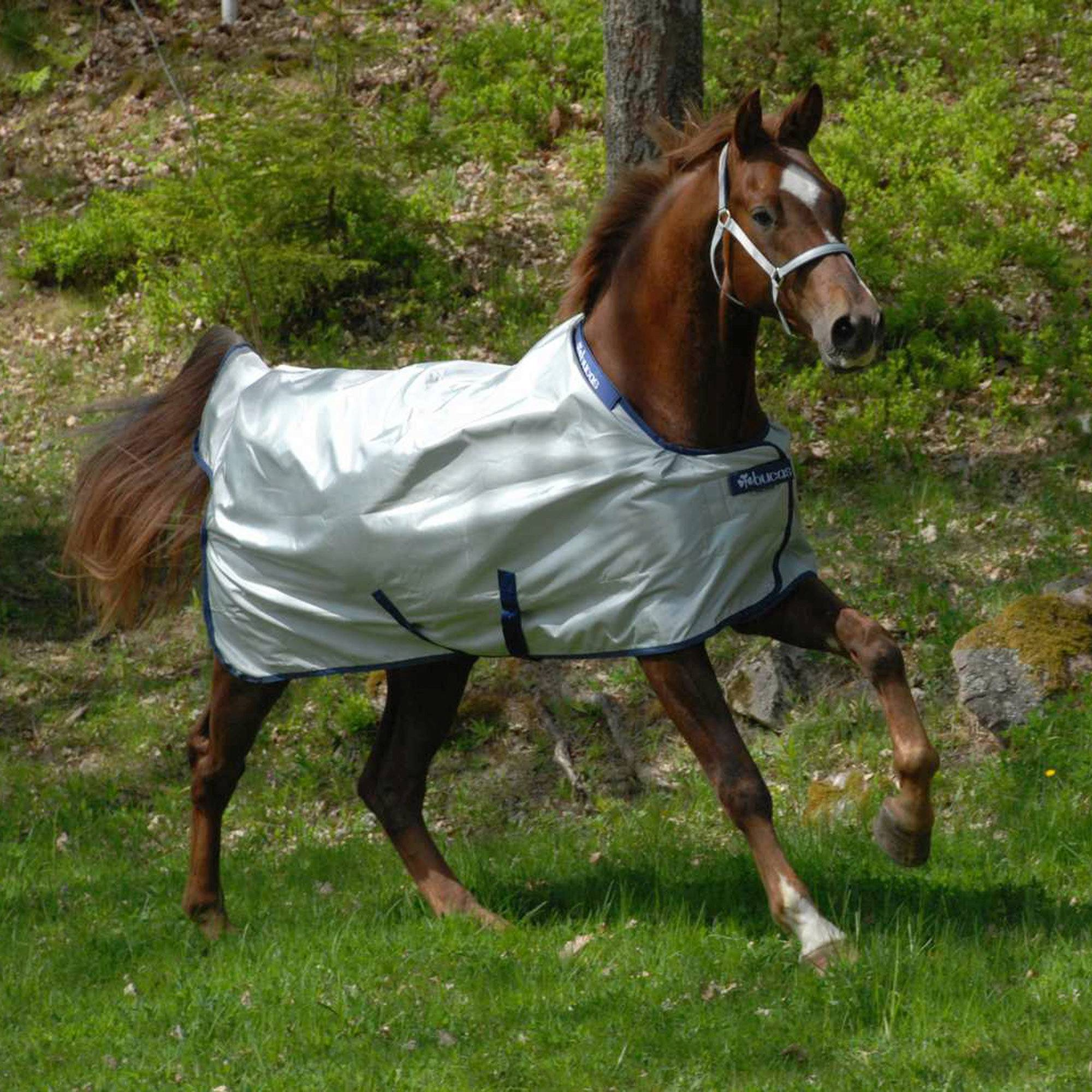 Bucas Power Light Weight Horse Turnout Blanket