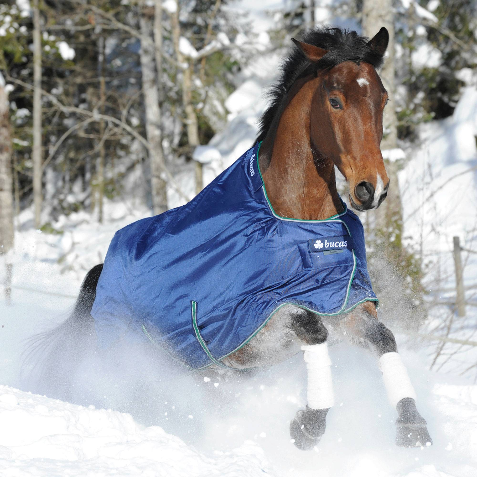 Bucas Smartex Heavy Weight Turnout Blanket