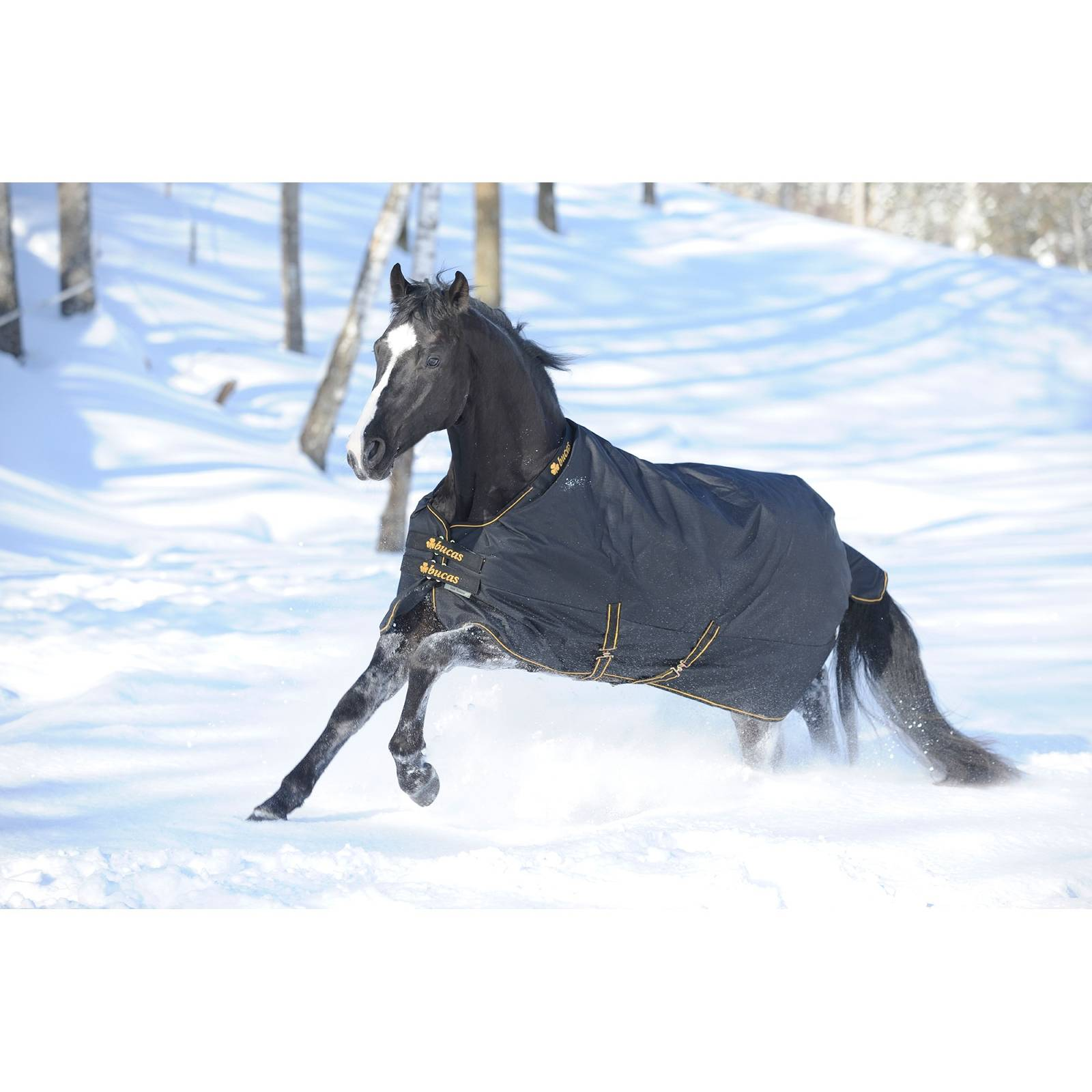 Bucas Irish Extra Heavyweight Horse Turnout Blanket